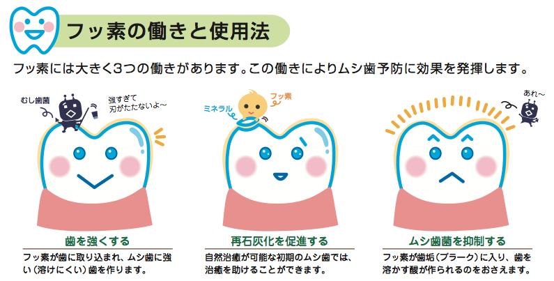フッ素塗布が虫歯予防になる3つの理由🐼